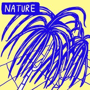 A digital illustration of a spider plant.